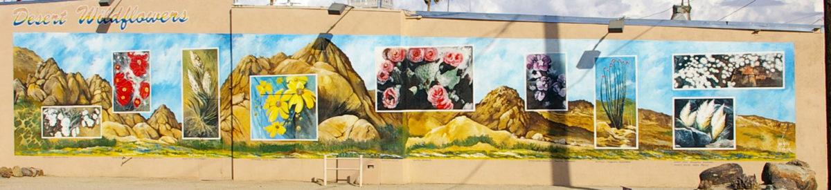 Desert Wildflowers mural, 29 Palms, California